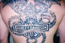 Harley D  / by Brandi Fisher