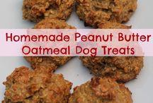 Homemade dog treats / by Alan Wass