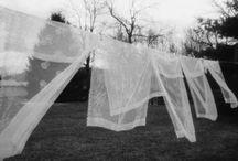 curtains / by Dana Rotman
