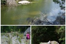 Parks and Creeks in Greater Austin / Time to get outdoors and explore.  Trails, creeks and parks are everywhere in our area.   / by Day Trippin From Austin
