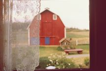 a love for barns / by Talia Lynn