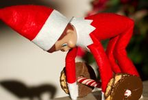Elf on the Shelf / by Susan Molnar