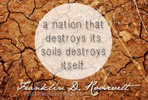Green Inspiration and quotes  / by RainHarvest Systems