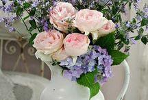 Flowers / by Wyn Will