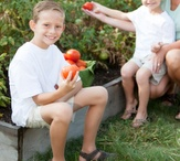 In my garden... / by The Survival Mom