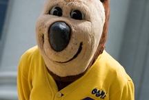 Go Bears! / by UC Berkeley Career Center