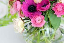 Flowers / by Michelle Lezack