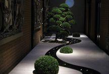 Gardens & Exteriors / by Lisa Adams