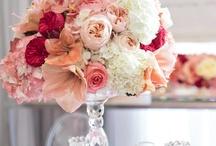 Wedding ideas / by Millie Quintanilla