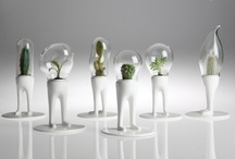 Objects / by Camille Isidio
