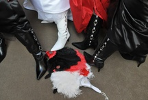 BB Fans / by Bennetts Boots Widecalfboots
