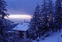 Wintery Weather / by Despina Moisiadou
