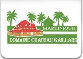 Martinique / by WSI (We Simplify Internet Marketing)
