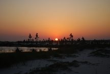 Beautiful Scenes / by MS Gulf Coast