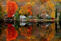 The Seasons / by Peg Schoenfelder