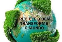 """Ecologia -sustentabilidade - Ecology, sustainability / Site """"O Vale do Ribeira"""" http://www.ovaledoribeira.com.br/ / by Camilo Aparecido"""