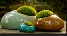 Garden Goodies /    / by Donna Lehl