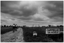 Bicycle Racing / What a great sport. From the early season classics to the Worlds in the late summer.  / by David Robins