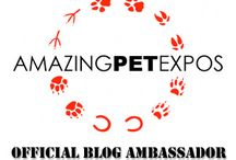 Amazing Pet Expos / Coverage from The Official Blog Ambassadors for Amazing Pet Expos: DogTipper.com, PrestonSpeaks.com, and CatTipper.com / by Paris Permenter