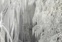 A winter wonderland / by C.k. Tice