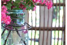 mason jars / by Ruth Henry