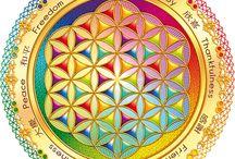 Sacret geometric / by Els