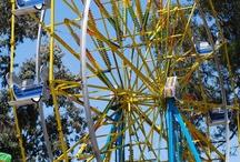 County fairs / by Susan Bellarosa