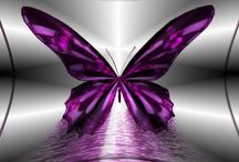 Butterflies / by Jo Henson