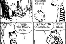 Calvin & Hobbs / by Robin Kanode Dillion