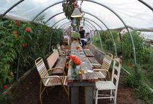 Flying Bear Gatherings Inspiration / by Melissa Brown