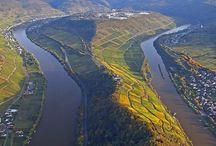 Discover Germany / by Majestic Wine