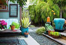 Outdoors/Gardening / by Stacey Desmarais Romanski