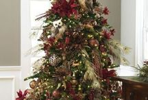 Holiday Decorations / by Janis Dennis