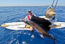 Kayak Angler / Fishing from a kayak. / by Fishingjo