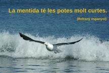 Frases / by Anna Soler Auledas