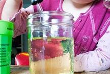 Preschool science / by Kimberley Dickerson