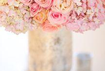 flowers / by Michelle Jones