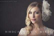 Birdcage Veil Inspiration / by Jennie Fresa
