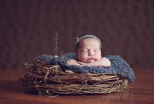 Baby photography  / by Nerissa Eubank