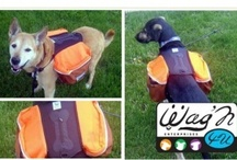 Perfect PET Products!  / Every Pet Lover's Dream! Products that are convenient, useful and inexpensive. Guaranteed to make taking your pet with you a wonderful experience! -:)  / by Premier ProductsRus