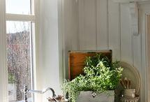 Shabby Ideas for Home / by Neta Herron