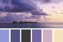 Scrapbooking Design Colour Schemes / by Anita Phillips