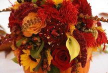 Our Fall Wedding / by Tara Bottino