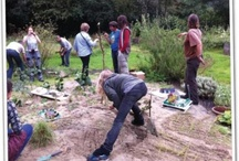 Permaculture / by France Holiday