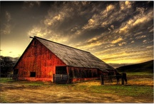 barns and farms :) / by Amber Hoffman