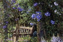 Jardines rusticos / by Maria Calero Fuentes