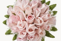 Wedding Flower Specials / A board to post all the wedding flower deals for brides to save and still have the amazing wedding they envision. / by Bridesign Wedding Flowers