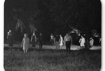 Night of the Living Dead / by AlleyCatshirts Zazzle