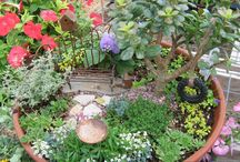 minature gardens / by Colleen Greger