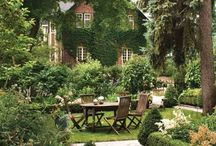 Cottage Gardens / by Tracey Shoemaker
